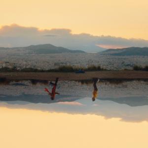 #FFF21 : L'identité visuelle du 21ème Festival du Film Francophone de Grèce